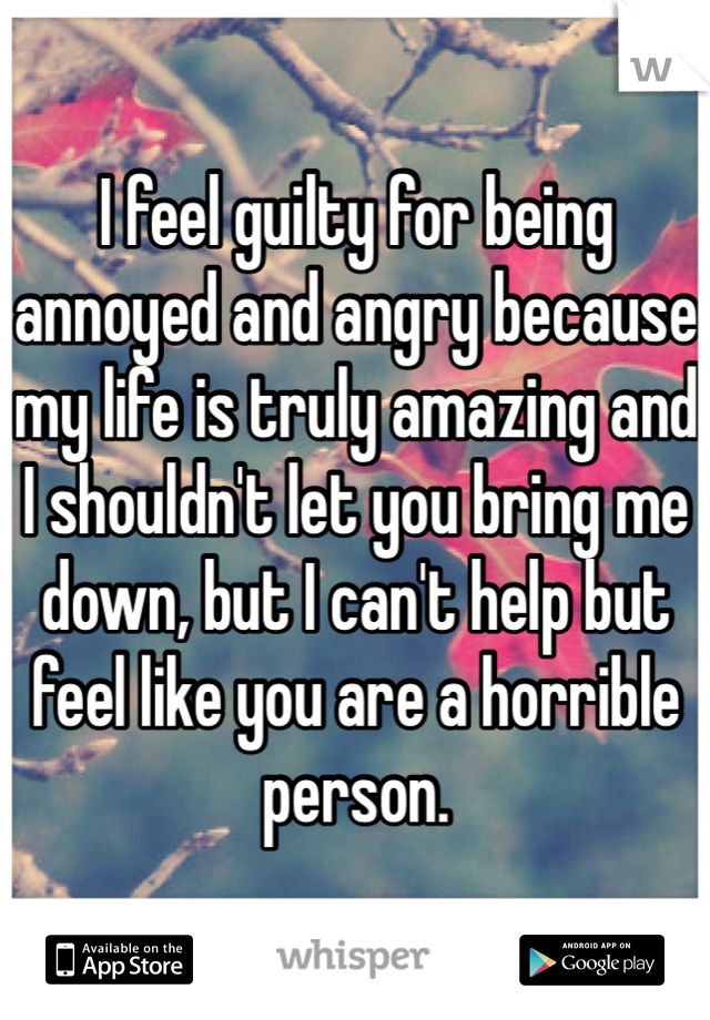 I feel guilty for being annoyed and angry because my life is truly amazing and I shouldn't let you bring me down, but I can't help but feel like you are a horrible person.