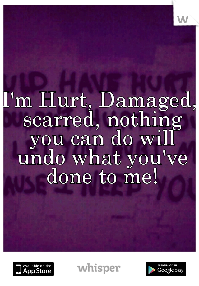 I'm Hurt, Damaged, scarred, nothing you can do will undo what you've done to me!
