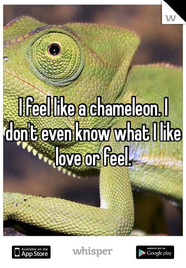 I feel like a chameleon. I don't even know what I like love or feel.