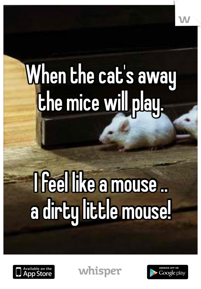 When the cat's away the mice will play.    I feel like a mouse .. a dirty little mouse!