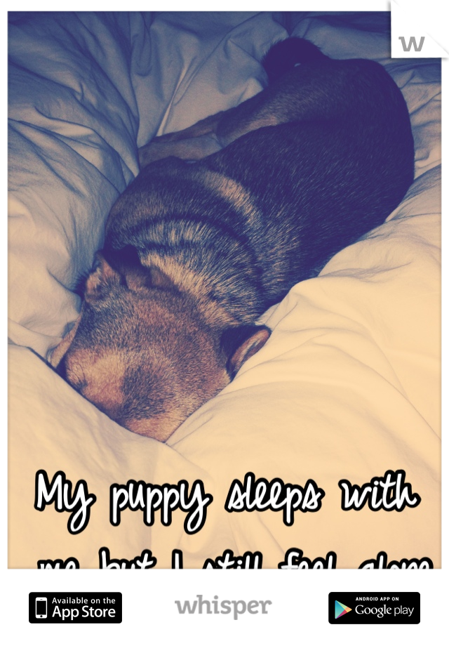 My puppy sleeps with  me but I still feel alone