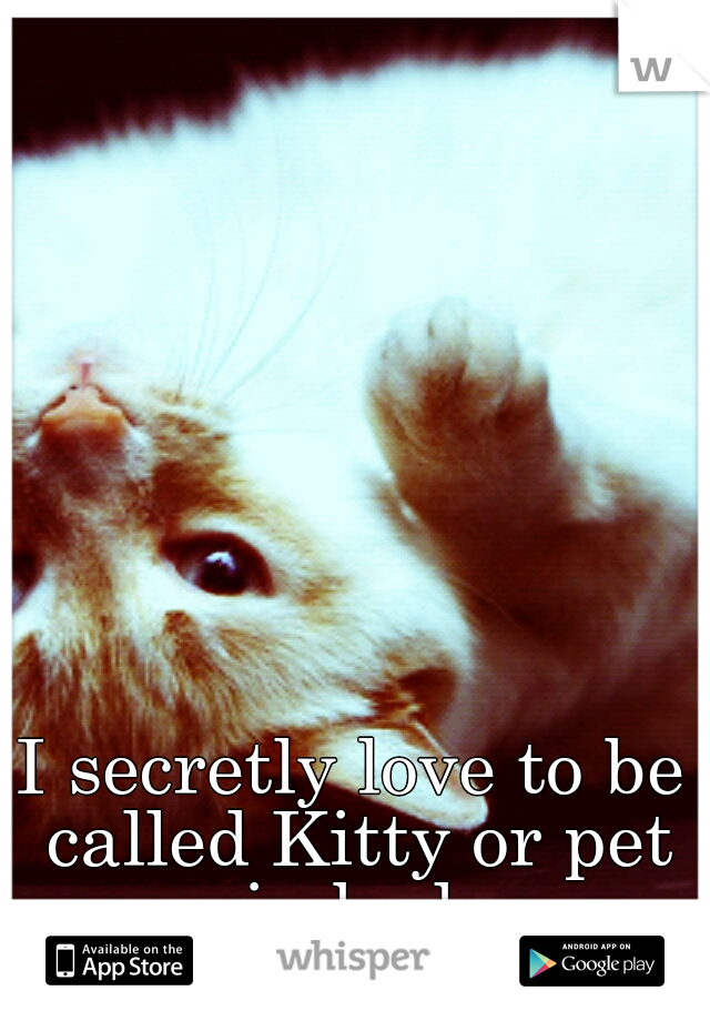 I secretly love to be called Kitty or pet in bed.