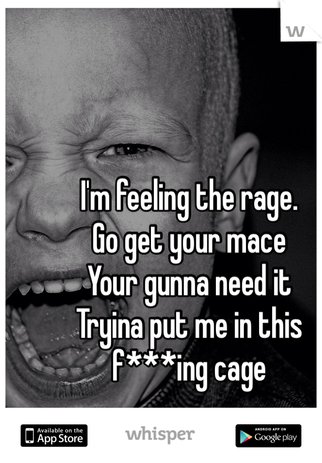 I'm feeling the rage. Go get your mace Your gunna need it Tryina put me in this f***ing cage