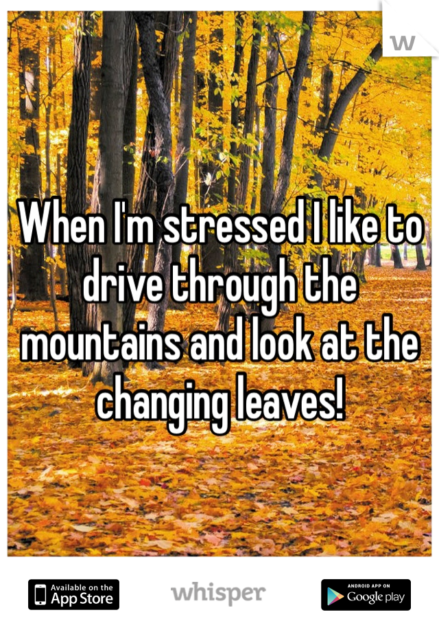 When I'm stressed I like to drive through the mountains and look at the changing leaves!