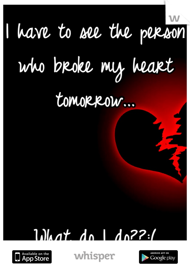 I have to see the person who broke my heart tomorrow...     What do I do??:(