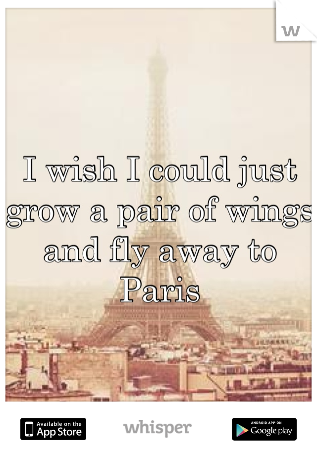 I wish I could just grow a pair of wings and fly away to Paris