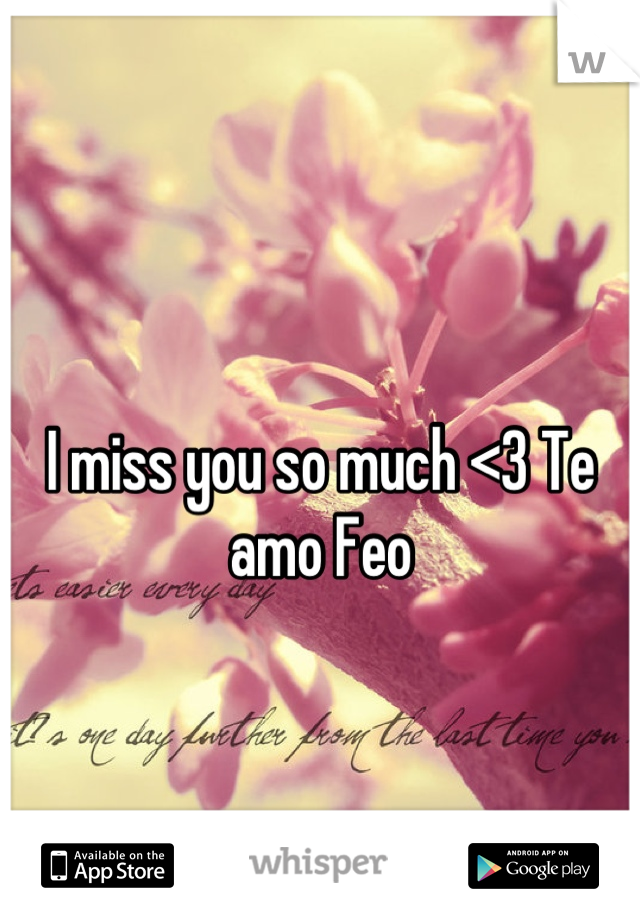 I miss you so much <3 Te amo Feo