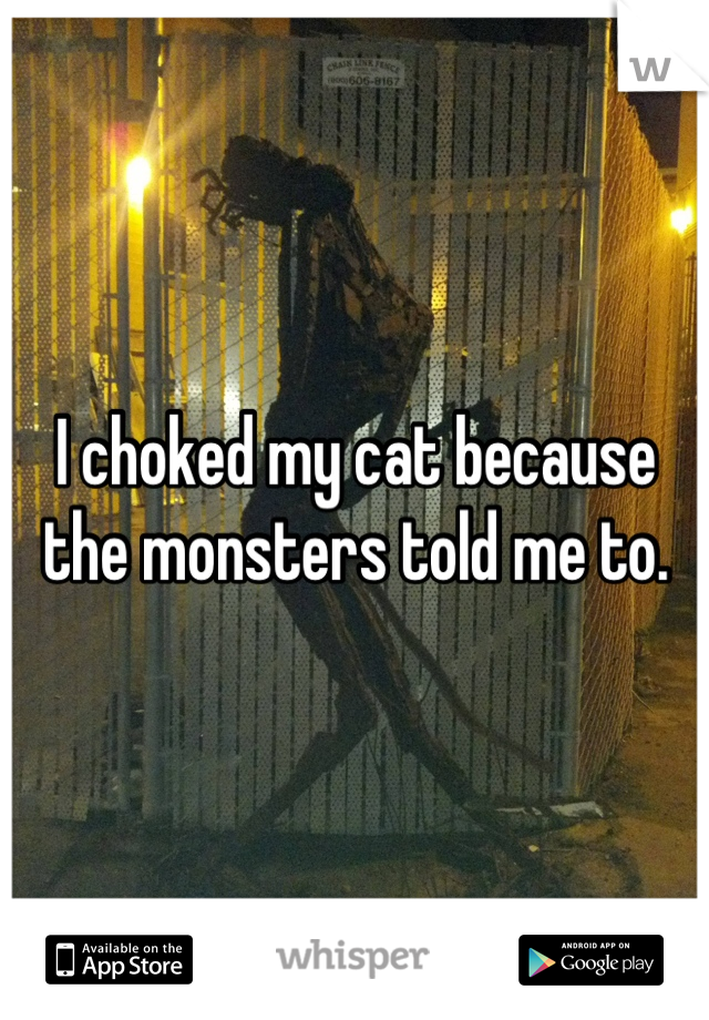 I choked my cat because the monsters told me to.