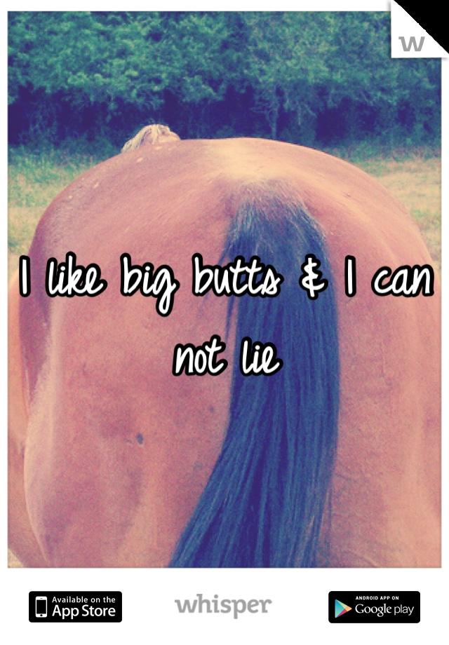 I like big butts & I can not lie