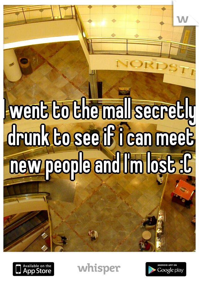 I went to the mall secretly drunk to see if i can meet new people and I'm lost :C