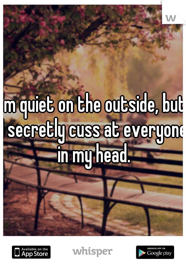 I'm quiet on the outside, but I secretly cuss at everyone in my head.