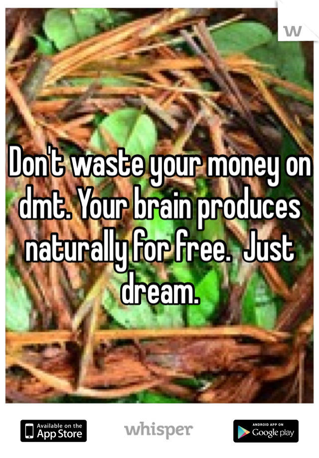 Don't waste your money on dmt  Your brain produces naturally