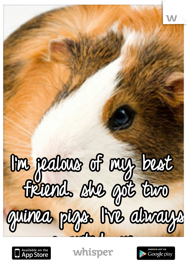 I'm jealous of my best friend. she got two guinea pigs. I've always wanted one.