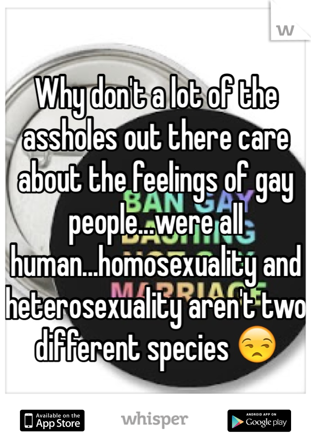 Why don't a lot of the assholes out there care about the feelings of gay people...were all human...homosexuality and heterosexuality aren't two different species 😒