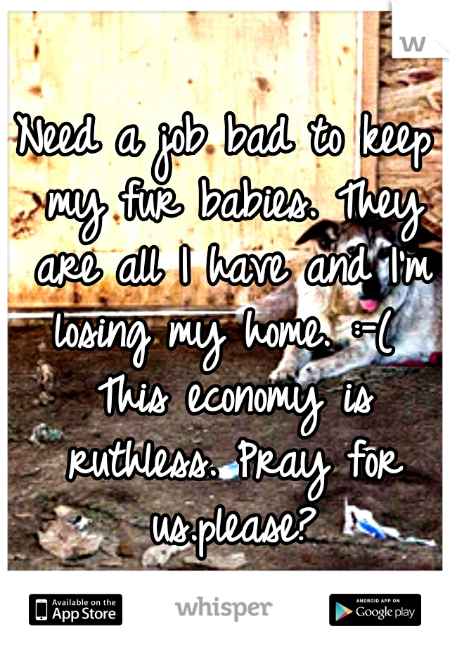 Need a job bad to keep my fur babies. They are all I have and I'm losing my home. :-(  This economy is ruthless. Pray for us.please?
