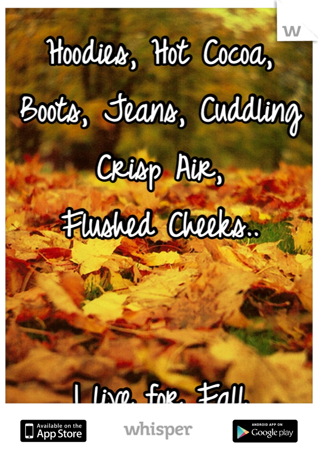 Hoodies, Hot Cocoa, Boots, Jeans, Cuddling Crisp Air,  Flushed Cheeks..   I live for Fall