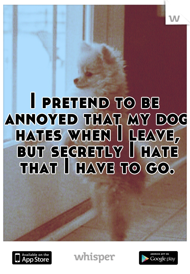 I pretend to be annoyed that my dog hates when I leave, but secretly I hate that I have to go.