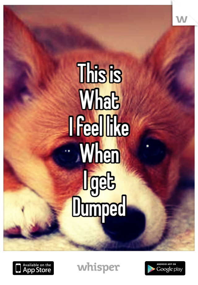 This is  What  I feel like  When  I get  Dumped