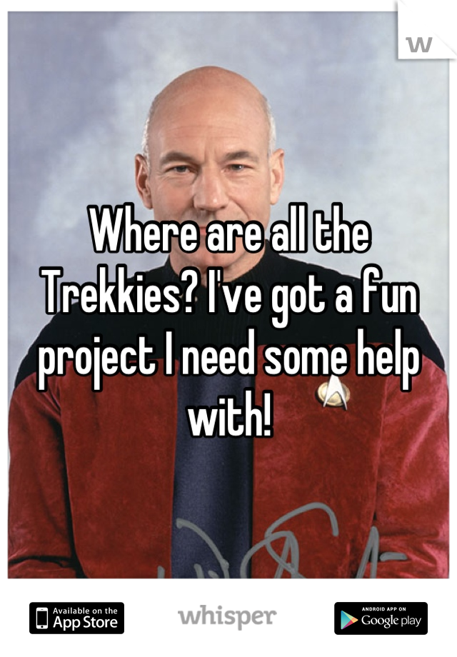 Where are all the Trekkies? I've got a fun project I need some help with!