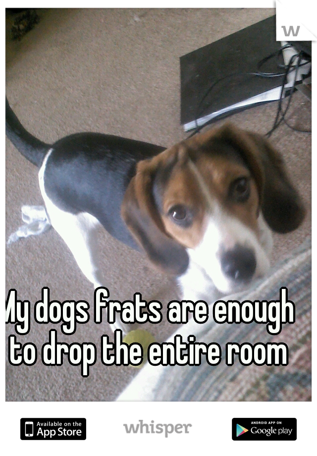 My dogs frats are enough to drop the entire room