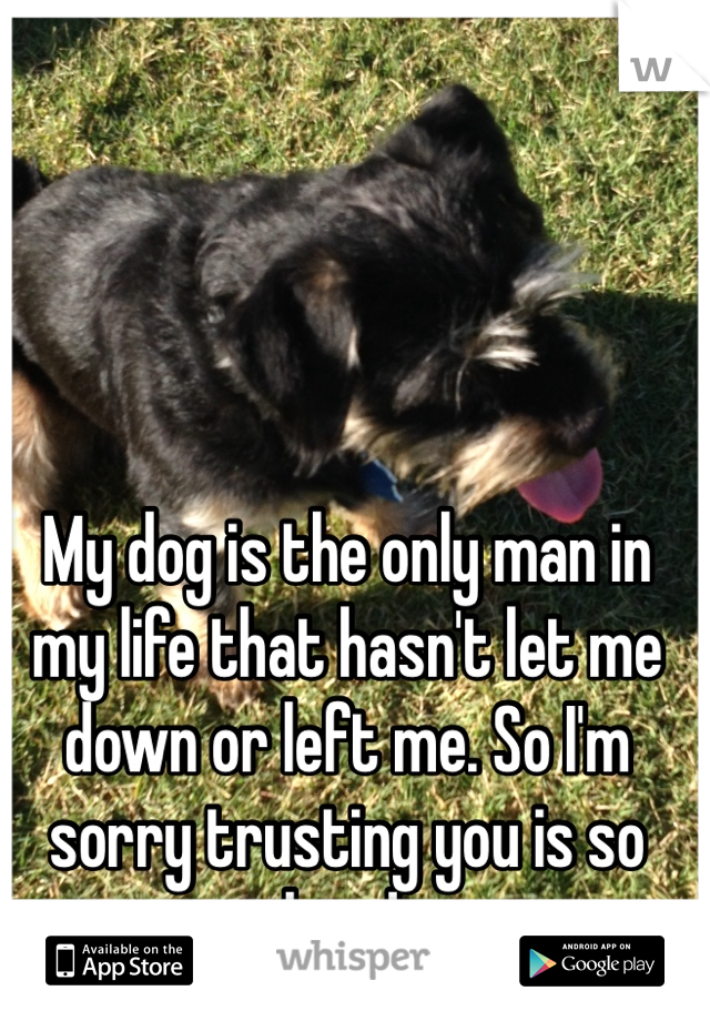 My dog is the only man in my life that hasn't let me down or left me. So I'm sorry trusting you is so hard.