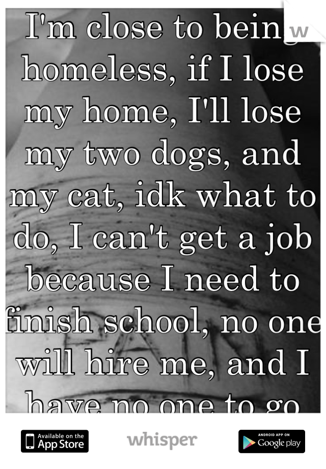 I'm close to being homeless, if I lose my home, I'll lose my two dogs, and my cat, idk what to do, I can't get a job because I need to finish school, no one will hire me, and I have no one to go to..