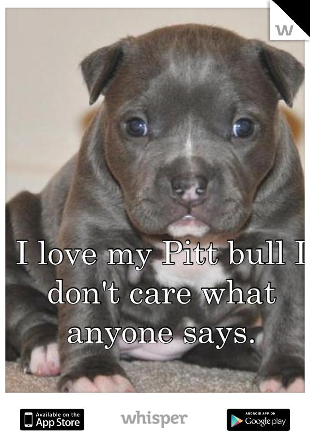 I love my Pitt bull I don't care what anyone says.