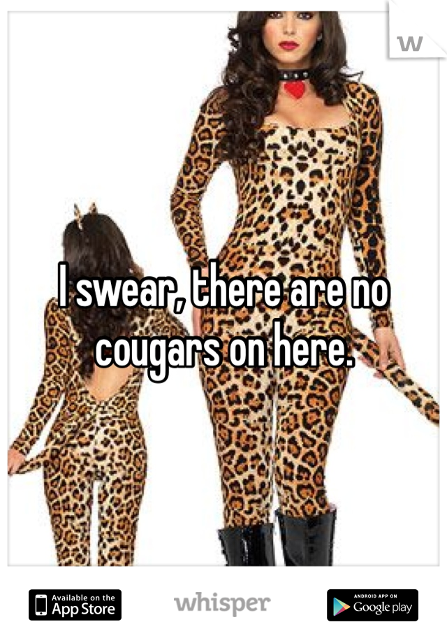 I swear, there are no cougars on here.