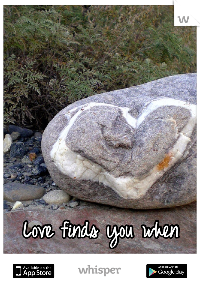 Love finds you when  you least expect it...