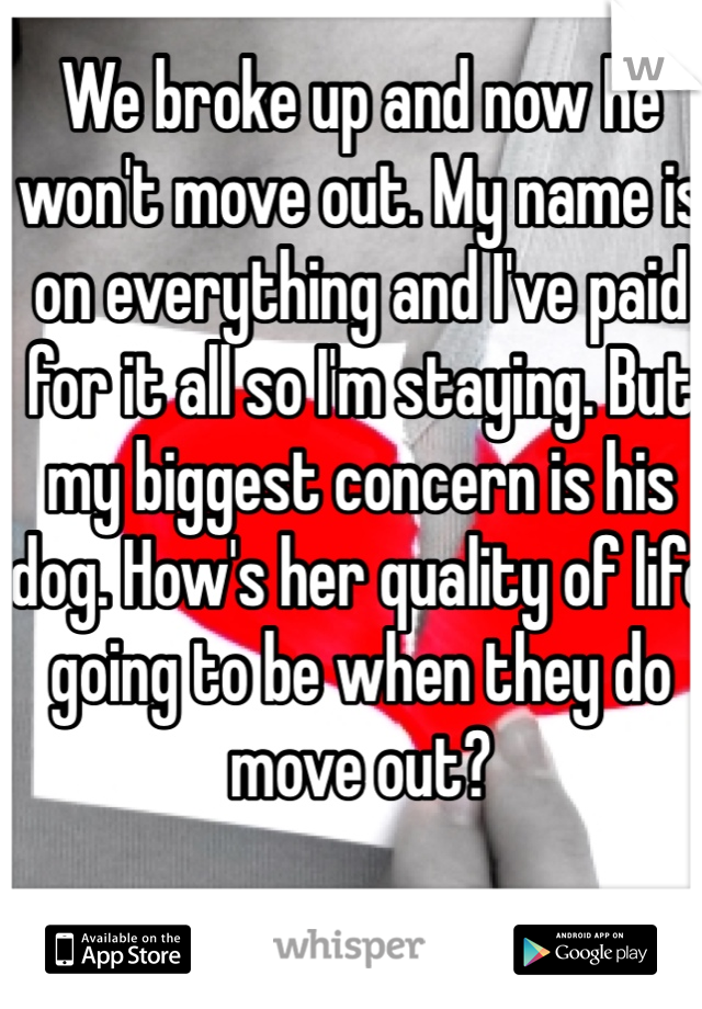 We broke up and now he won't move out. My name is on everything and I've paid for it all so I'm staying. But my biggest concern is his dog. How's her quality of life going to be when they do move out?