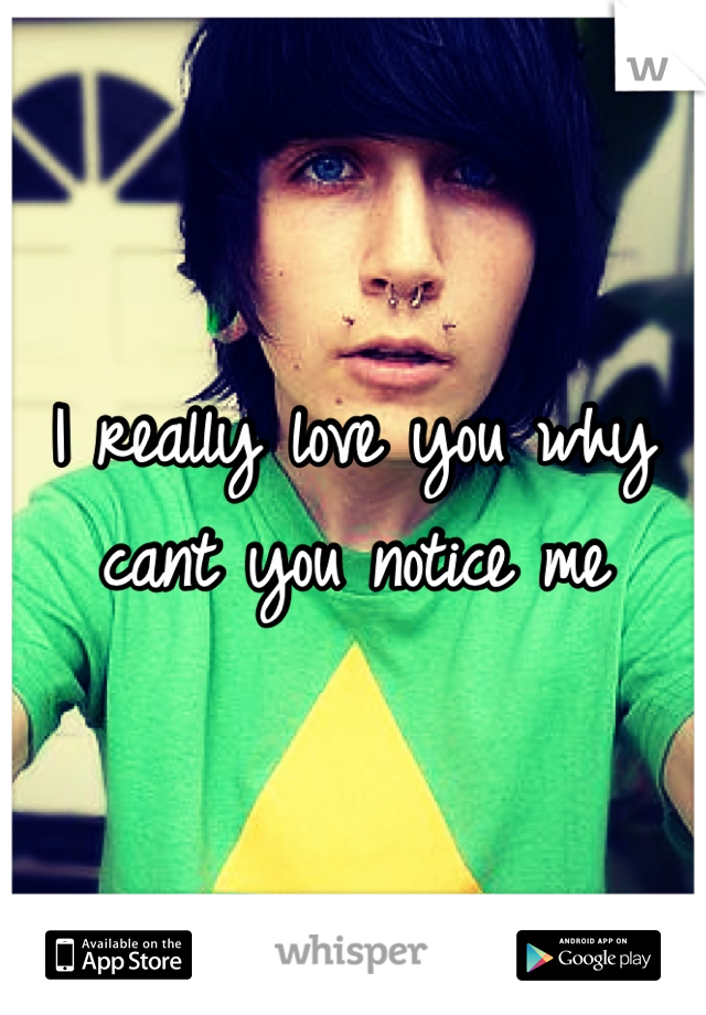 I really love you why cant you notice me