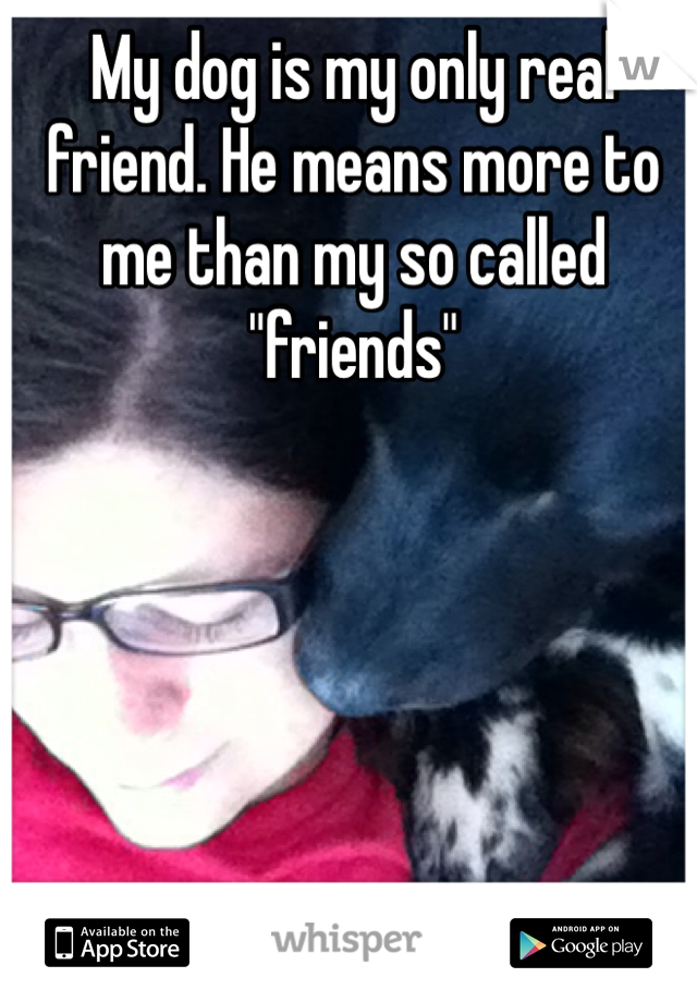 """My dog is my only real friend. He means more to me than my so called """"friends"""""""