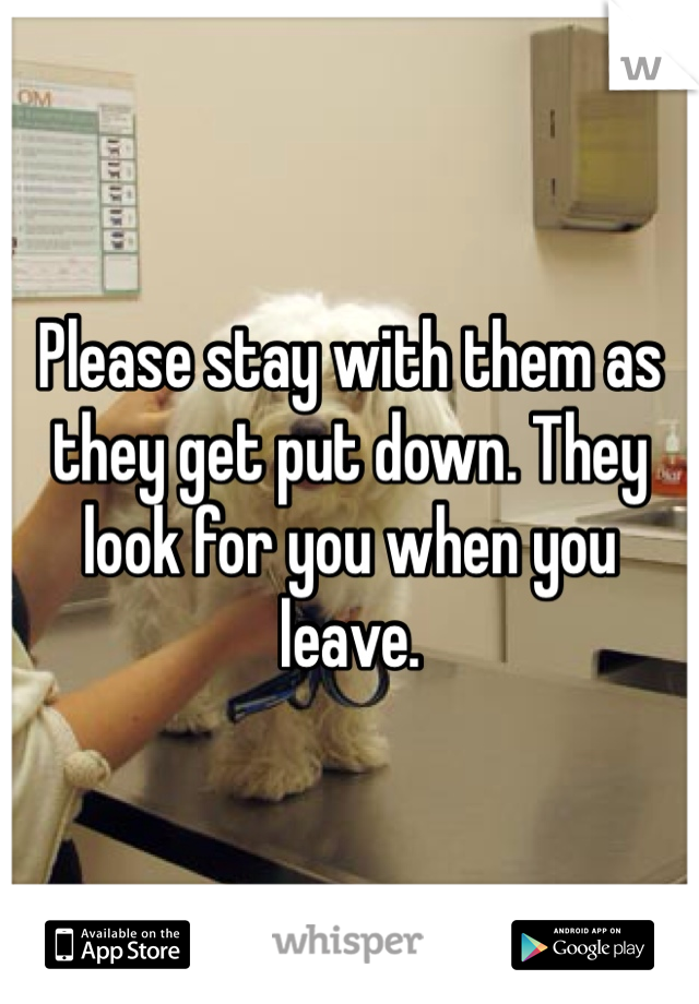 Please stay with them as they get put down. They look for you when you leave.