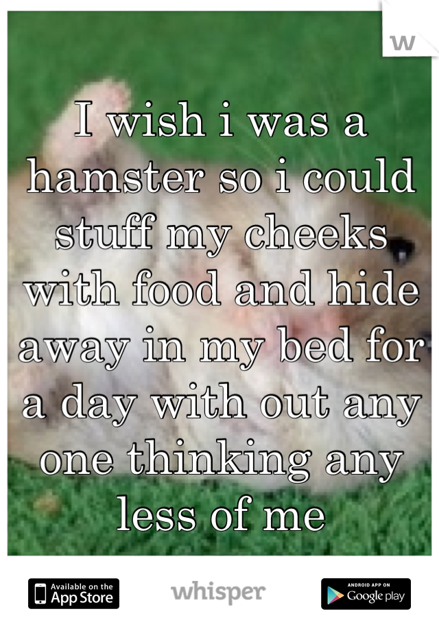 I wish i was a hamster so i could stuff my cheeks with food and hide away in my bed for a day with out any one thinking any less of me
