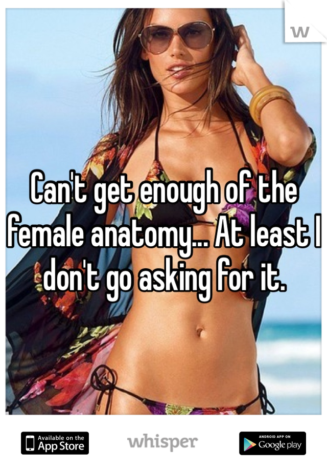 Can't get enough of the female anatomy... At least I don't go asking for it.