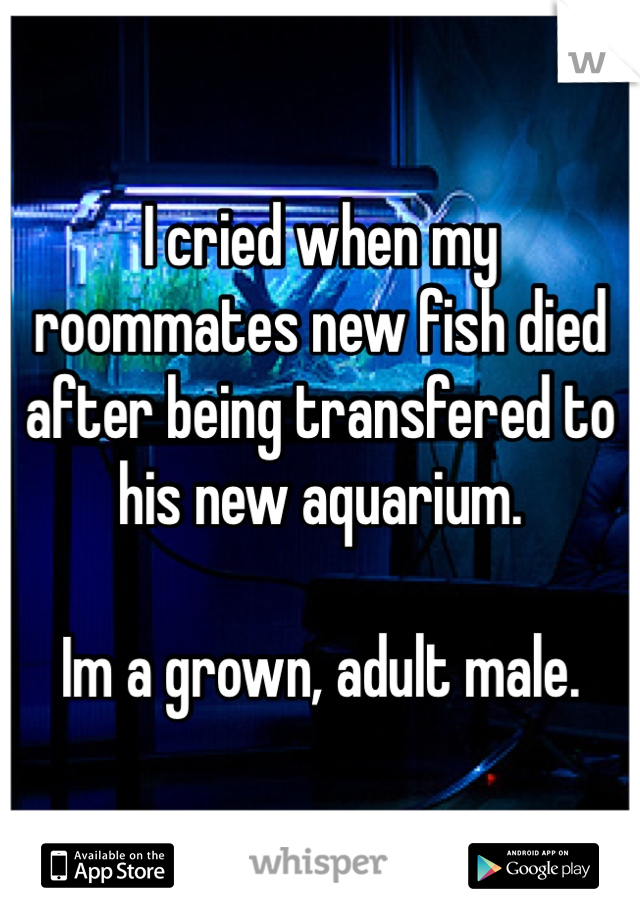 I cried when my roommates new fish died after being transfered to his new aquarium.    Im a grown, adult male.