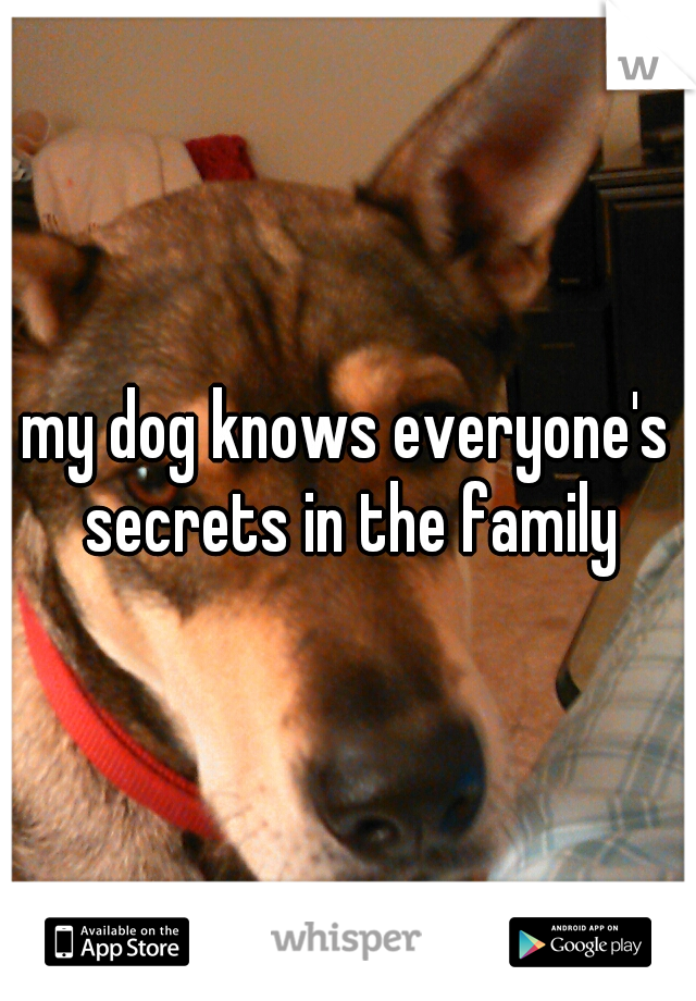 my dog knows everyone's secrets in the family