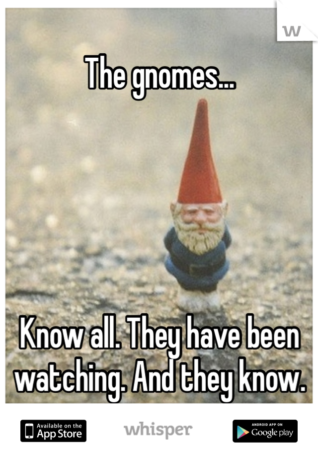 The gnomes...      Know all. They have been watching. And they know.