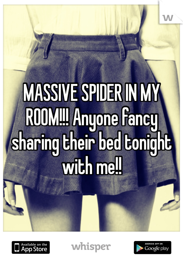 MASSIVE SPIDER IN MY ROOM!!! Anyone fancy sharing their bed tonight with me!!