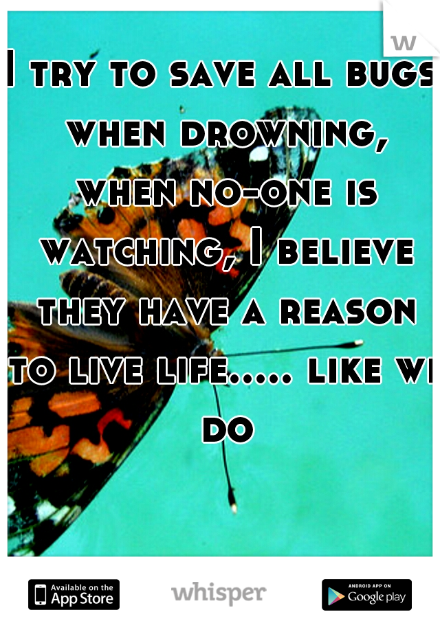 I try to save all bugs when drowning, when no-one is watching, I believe they have a reason to live life..... like we do