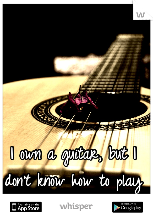 I own a guitar, but I don't know how to play it.