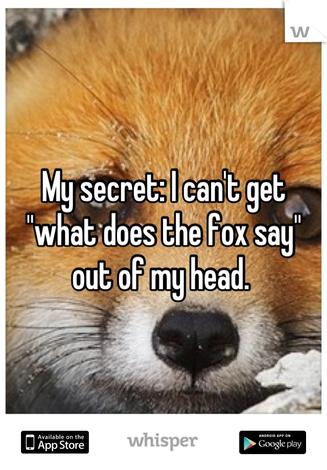 """My secret: I can't get """"what does the fox say"""" out of my head."""