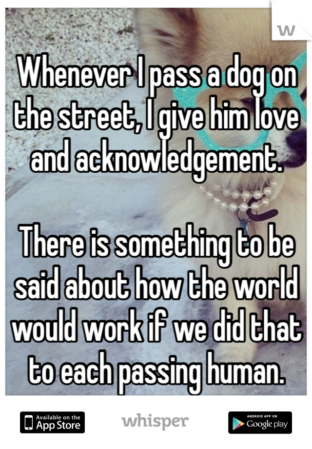 Whenever I pass a dog on the street, I give him love and acknowledgement.   There is something to be said about how the world would work if we did that to each passing human.