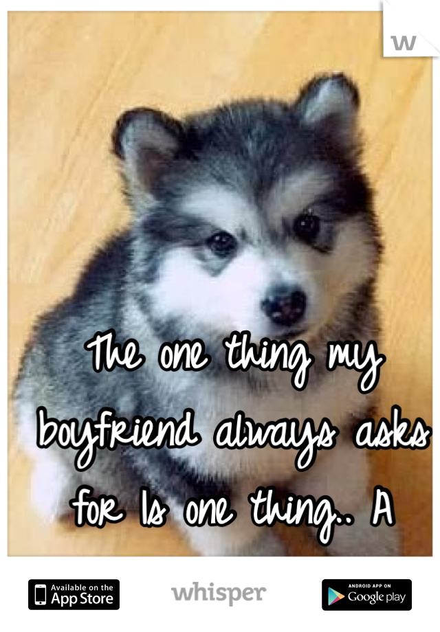 The one thing my boyfriend always asks for Is one thing.. A husky 🐾