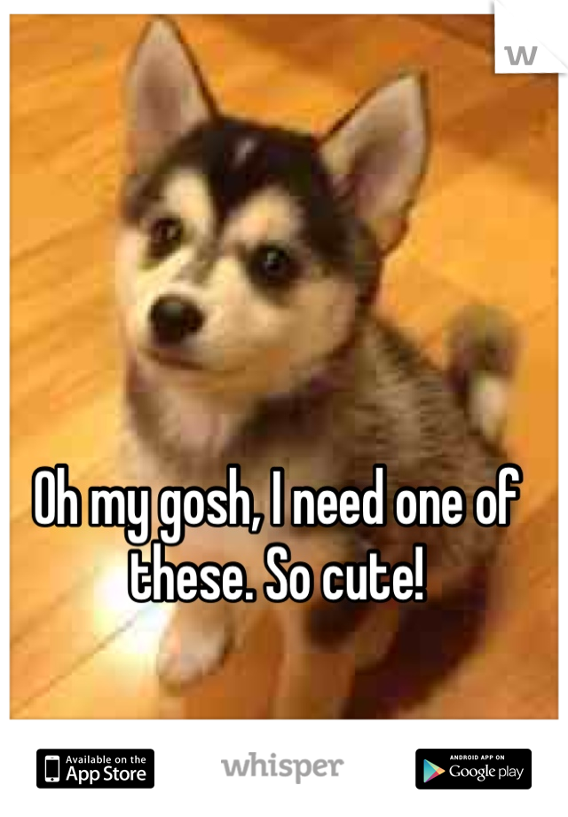 Oh my gosh, I need one of these. So cute!