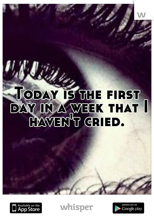 Today is the first day in a week that I haven't cried.