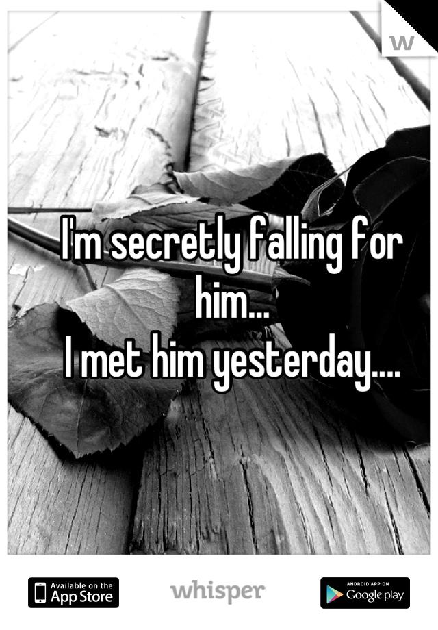 I'm secretly falling for him... I met him yesterday....