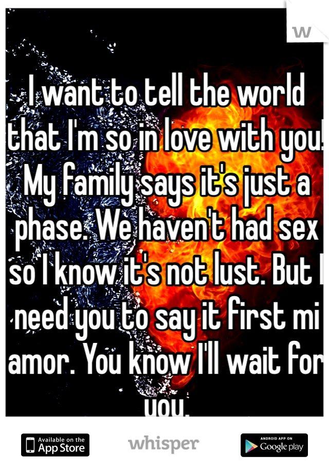 I want to tell the world that I'm so in love with you! My family says it's just a phase. We haven't had sex so I know it's not lust. But I need you to say it first mi amor. You know I'll wait for you.