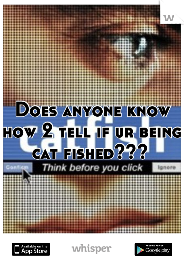 Does anyone know how 2 tell if ur being cat fished???