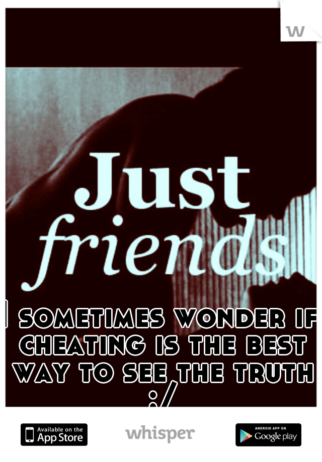 I sometimes wonder if cheating is the best way to see the truth :/